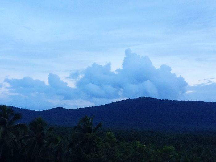 Wow Cloudy