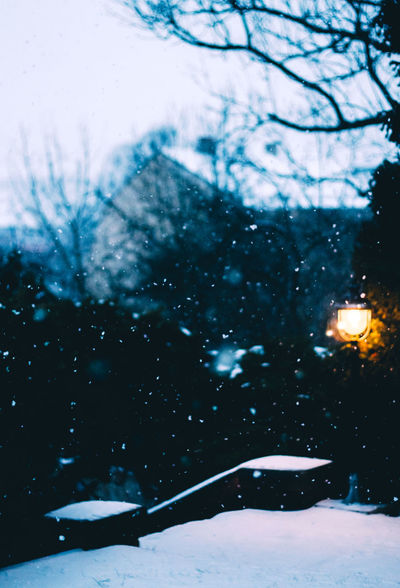 Beauty In Nature Bokeh Cold Temperature Depth Of Field Frozen Light Nature No People Outdoors Scenics Season  Snow Snowflake Snowflakes Snowing Stairs Tree Weather Winter