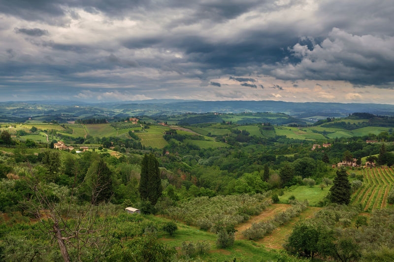 Waiting for the clouds to lift, I made this picture from Tuscany Beauty In Nature Cloud - Sky Day Environment Field Green Color Growth Idyllic Land Landscape Nature No People Non-urban Scene Outdoors Plant Rolling Landscape Scenics - Nature Sky Tranquil Scene Tranquility Tree