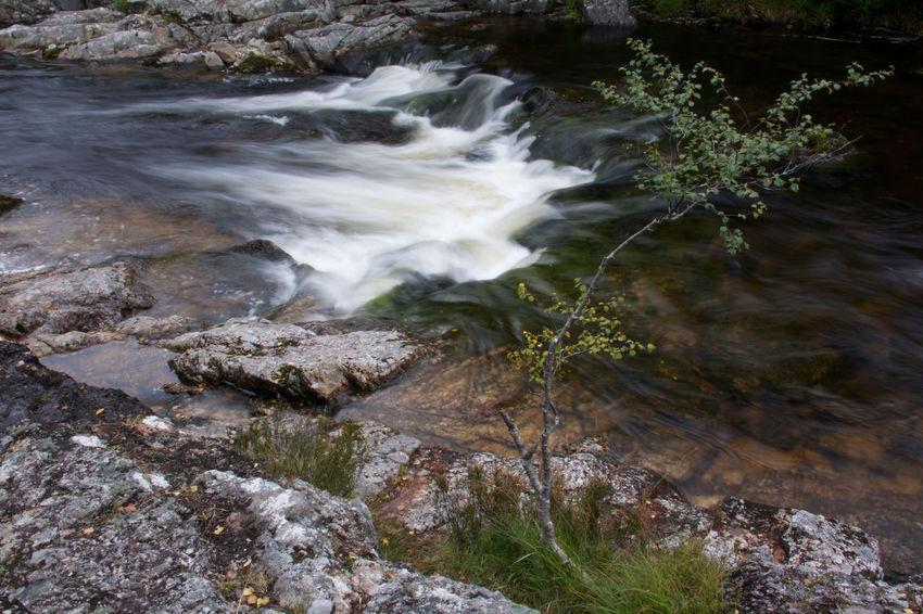 Scotland Glen Affric Beauty In Nature Blurred Motion Day Dog Falls Flowing Flowing Water Land Long Exposure Motion Nature No People Outdoors Plant Power In Nature Rock Rock - Object Rock Formation Scenics - Nature Sea Solid Stream - Flowing Water Tranquility Water
