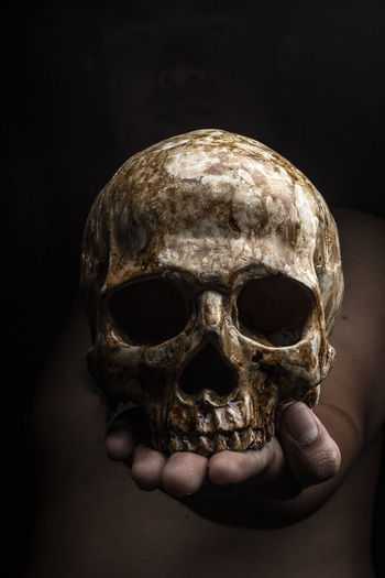 Close-up of human hand holding skull