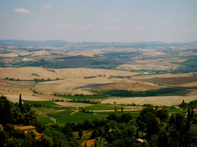 Montalcino. Toscana Agriculture Beauty In Nature Day Field Landscape Nature No People Outdoors Patchwork Landscape Rural Scene Scenics Sky Tranquil Scene Tranquility Tree
