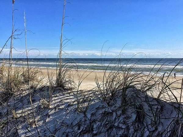 -OCEANGRASS- Enjoying the gorgeous views with @kar_bear12 Northcarolina Beach Sand Seagulls Water Grass Sky Vscocam Ocean Snapseed Pixelpanda Saltlife Surfcity Topsailbeach Nature Instagram IPhone IPhoneography Photooftheday Blueskies Iphone6plus Vacation2015