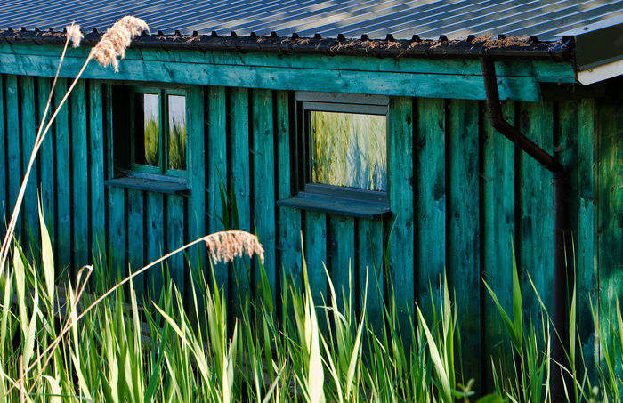 Boatshouse and reeds. Architecture Blue Blue Color Boat House Building Exterior Built Structure Day Green Color Growth History House In Front Of Krakow Nature No People Outdoors Plant Reeds Roof Shed Tranquility
