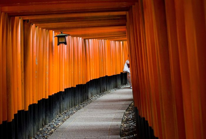 Taken in Fushimi Inari Shrine. Kyoto, Japan Adult Architectural Column Architecture Built Structure Fushimi Inari Shrine Kimono Kyoto Kyoto City Kyoto Shijo Ohashi Area Kyoto, Japan Lifestyles Mystery One Person Orange Color People Place Of Worship Real People Rear View Red Gate Religion Shrine Shrines & Temples Spirituality Woman