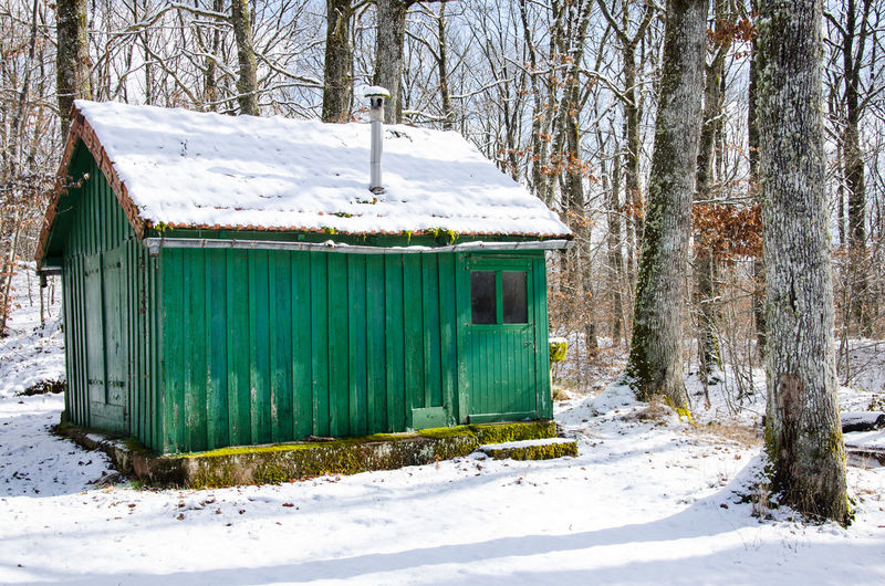 Snow Winter Cold Temperature Tree Land Covering Plant Nature No People Field Day Green Color Forest White Color Built Structure Architecture Outdoors Beauty In Nature Bare Tree Cabin Hut Architecture Women Wood - Material Woods Exterior Tree Trunk Deep Snow Snowcapped Frozen