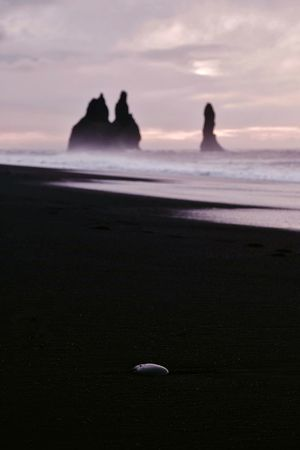 Black Stone (find me on IG @noeldxng)The Week On EyeEm Connected By Travel Lost In The Landscape Iceland Beauty In Nature Outdoors Scenics Tranquil Scene Travel Silhouette Sand Beach Black Atlantic Adventure Power In Nature Perspectives On Nature A New Beginning