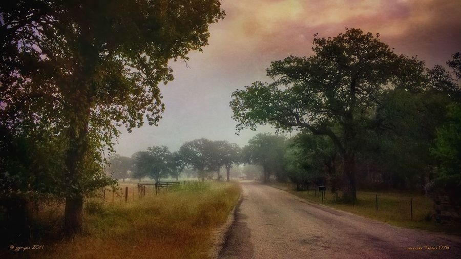 ...across Texas 078 NEM Submissions NEM Landscapes AMPt_community NEM GoodKarma