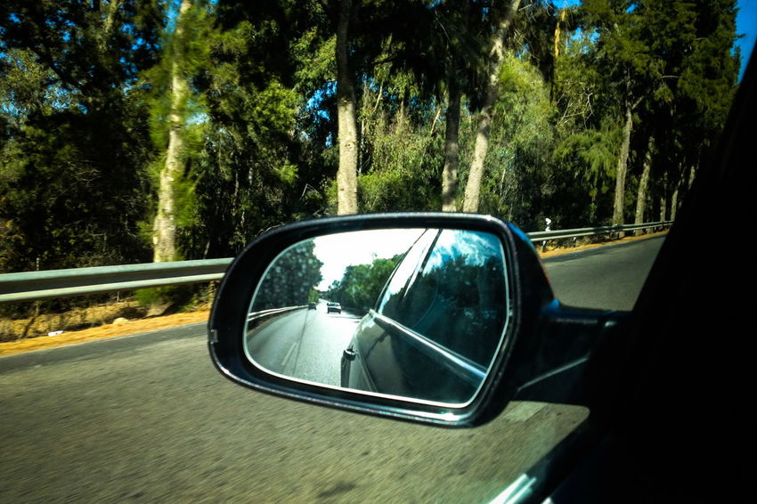 Car Car Travel Mirror Rearview Road Traveling Trees