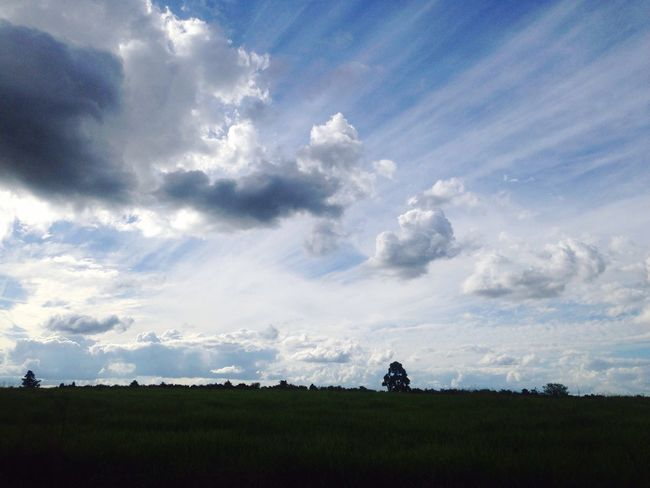 Sky Day Cloud - Sky Nature Field Landscape Grass Tranquility Silhouette Tranquil Scene Beauty In Nature No People Scenics Growth Outdoors