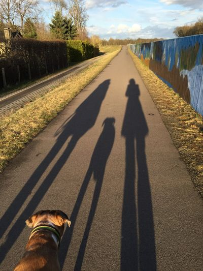Shadow Promenader Exploring New Ground RePicture Friendship Shadow Family