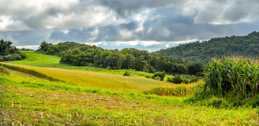 Green valley Beauty In Nature Cloud - Sky Day Green Color Landscape Nature Outdoors Rural Scene