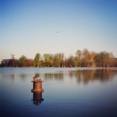 The Round Pond in #kensington #gardens ?????☀ #alan_in_london #gf_uk #gang_family #igers_london #insta_london #london_only #thisislondon #ic_cities #ic_cities_london #ig_england #love_london #o2trains #gi_uk #ig_london #touristlondon #touristlondon Gi_uk Igers_london Ig_england Love_london Gardens Ic_cities_london Gang_family Ig_london Kensington London_only Ic_cities Gf_uk Alan_in_london Insta_london O2trains Thisislondon Touristlondon