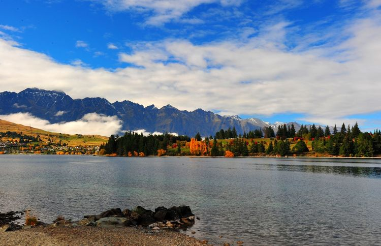 Long Clouds Reflection Photography Lakesideview Lakefront Forrest Nature Landscape Queenstown Newzealand New Zealand Traveling Nature Autumn Mountain_collection