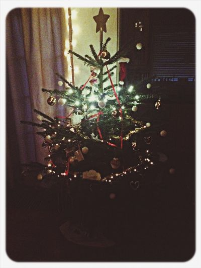 Kerstboom  Christmas Tree Christmas Kerst
