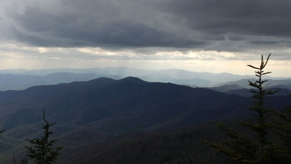 Gatlinburg Tennessee Mountain Nature Tree Outdoors Landscape Forest Fog Beauty In Nature No People Scenics Mountain Range Sky Tennessee Mountains Clingmans Dome