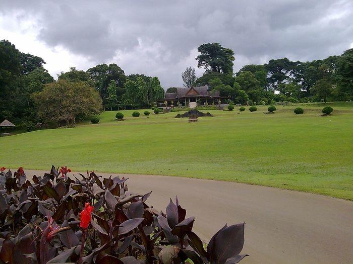 Good Morning! Taking Photos at Botanical Gardens ..