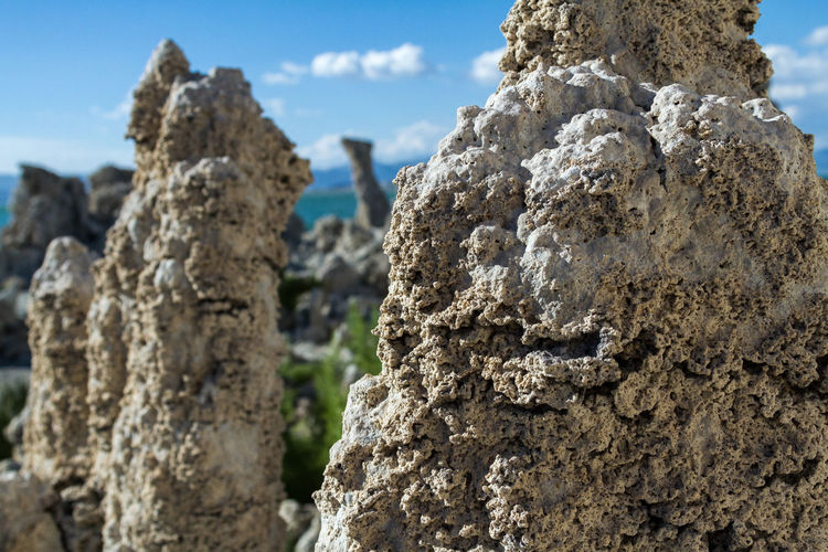 Close-up of tufas in mono lake tufa state natural reserve