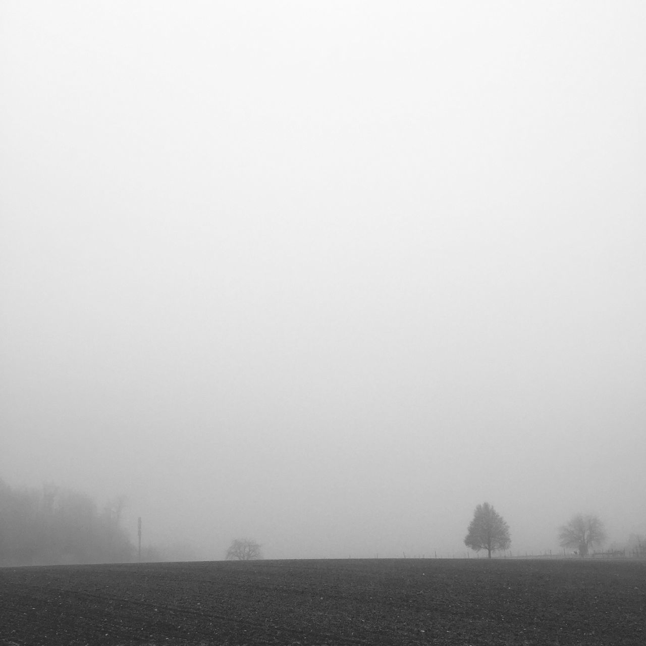 landscape, tranquility, copy space, fog, nature, tranquil scene, field, beauty in nature, scenics, mist, outdoors, agriculture, hazy, plough, no people, day, rural scene, tree, sky