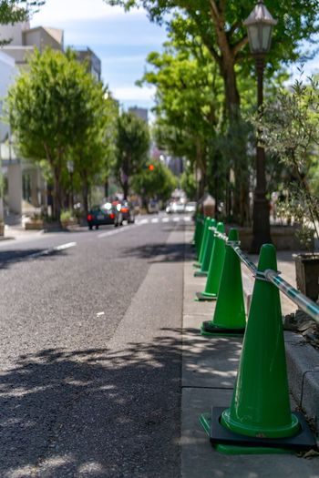 Kobe is green city. Green City Japan Shady Tranquility Travel City Cone Green Color Kobe Mode Of Transportation Nature No People Outdoors Plant Road Street Town Tranquil Scene Transportation Travel Destinations Tree