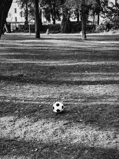 View of soccer ball on field
