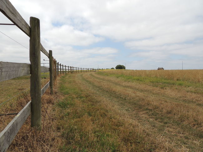 France Loire Touraine Barrier Beauty In Nature Boundary Cloud - Sky Day Environment Fence Field Grass Land Landscape Nature No People Outdoors Plant Rural Scene Scenics - Nature Sky The Way Forward Tranquil Scene Tranquility Wooden Post