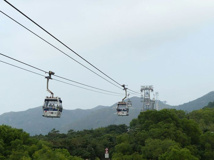 Ngong Ping 360 Cable Car Over Trees Against Sky