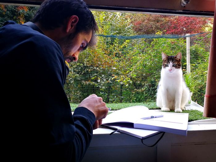 Studying under supervision Men Studying Guy Sitting Cat Observing Biologist Pets Sitting Concentration Table