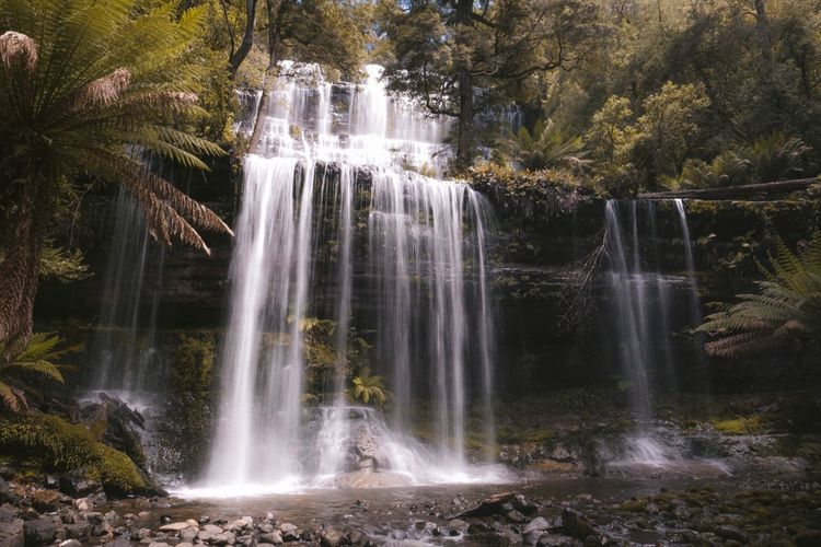 Waterfall Water Scenics Motion Beauty In Nature Long Exposure Idyllic Nature Environment Tree Travel Destinations Tranquility Flowing Water Outdoors Freshness No People Vacations Fountain Day