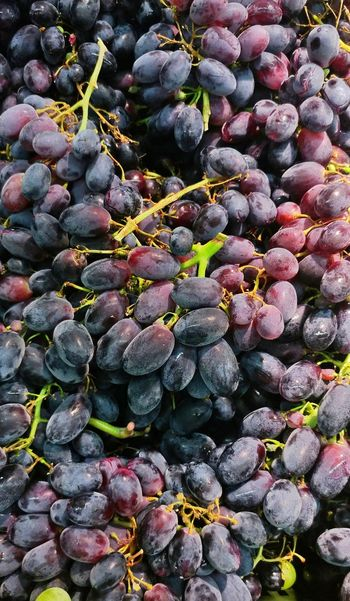 Backgrounds Fruit Full Frame Nature Abundance No People Freshness Food Healthy Eating Large Group Of Objects Close-up Eyeem Philippines Red Grapes Grapes Fruits Lgv20photography Lgv20