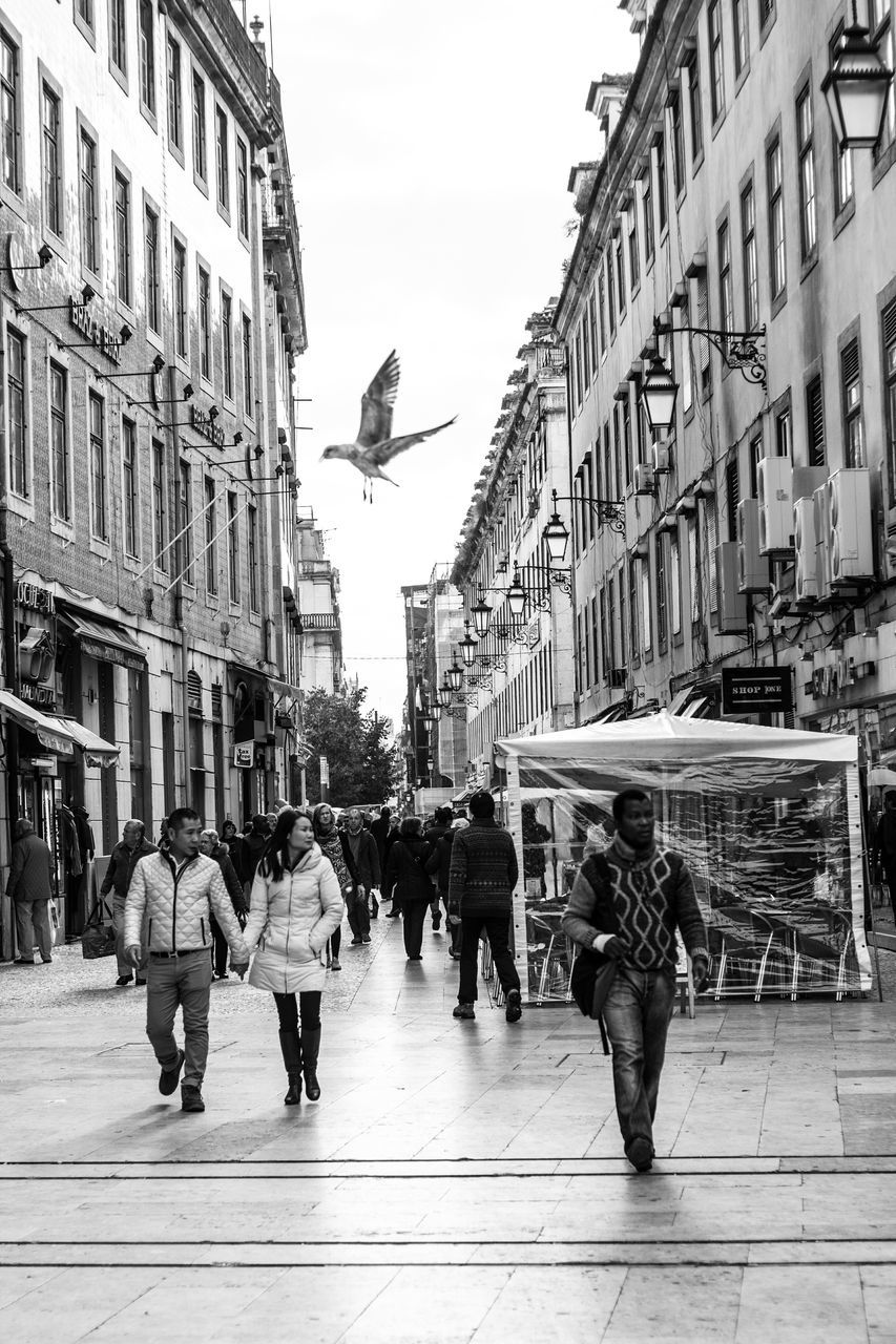 architecture, building exterior, built structure, city, city life, real people, day, bird, one animal, outdoors, men, large group of people, women, full length, flying, sky, spread wings, adult, people