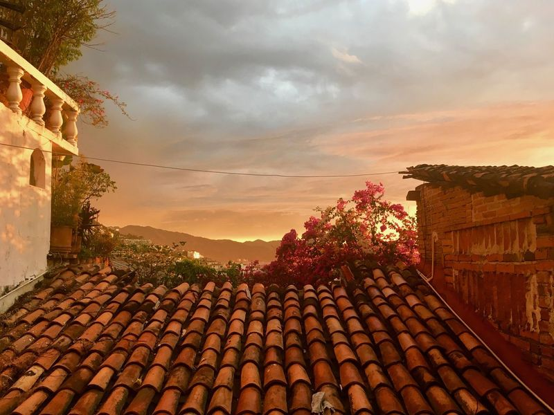 Mexican nights Nature Lush Foliage Outside Photography No People Architecture Night Sky Night Scene Mountain View Red Roof Red Roof Tile Balcony View Balcony Shot Electricity Lines Pink Flower Architectural Feature Architecture_collection