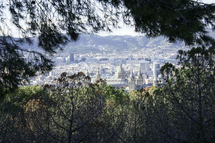 Naturevscity Landmarkbuildings Outdoors Beauty In Nature Cityscapes Panoramic Landscape