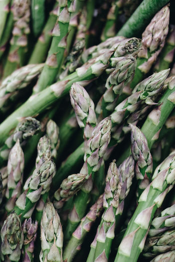 No People Full Frame Backgrounds Close-up Freshness Food And Drink Green Color Food Plant Day Healthy Eating Wellbeing Nature Large Group Of Objects Abundance Vegetable Market For Sale Outdoors Asparagus