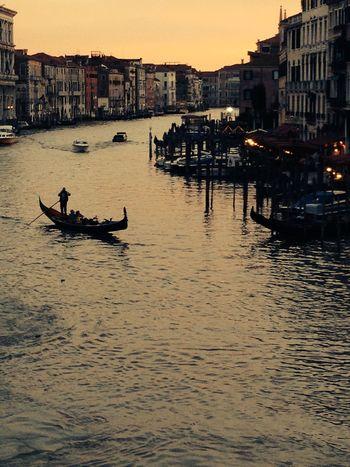Canal Grande Venezia Architecture Canal Gondola Gondolier Ponte Di Rialto Silhouette Sunset Waterfront