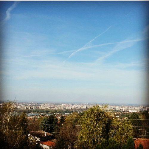 Pogled iz kancelarije Office View Novi Sad