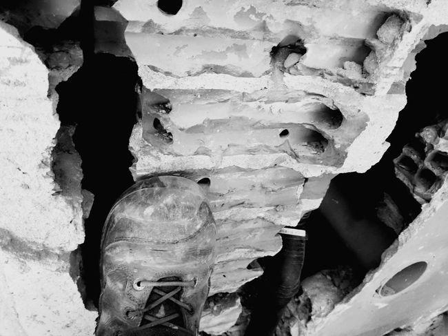 Full Frame Textured  Close-up Paleontology Rough Prehistoric Era Evolution  Bark Plant Bark Uneven Abstract Backgrounds Extinct Rugged Animal Skeleton Dinosaur Limestone Skeleton Tree Trunk Marbled Effect Eroded Animal Bone Knotted Wood Toy Animal Skull Bone  Animal Skull Quartz Rock - Object Arid Tree Ring
