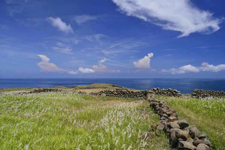 Green Color Beauty In Nature Blue Field Grass Horizon Horizon Over Water Land Marram Grass No People Non-urban Scene Ocean Scenics - Nature Sea Sky Tranquility Water EyeEmNewHere