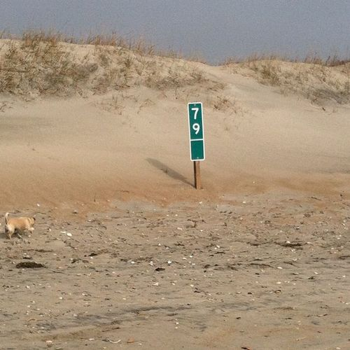 Mile marker on the empty beach.....alright then OBX Ocracoke Outerbanks