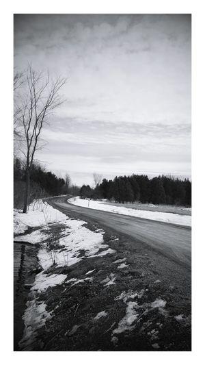 Photo prise le 20 Mars 2017 Ontario Ontario, Canada PhotosophLav Photo♡ Mesphotos Hivernal  Nature Tree Sky Outdoors printemps EyeEmNewHere