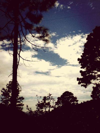 Sanmateoriohondo Silouette & Sky Contraluz Taking Photos