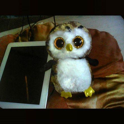 Наш первый экземпляр TheBeanieBoosCollection -Совенок Owliver . Старт коллекции дан! МягкиеИгрушки МояКоллекция СтартКоллекцииДан МояКоллекцияСтартовала ЯКоллекционер