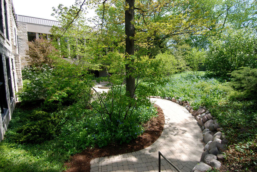 Highland Park Library Architecture Day Garden Path Green Color Growth Nature No People Outdoor Garden Outdoors Plant Tranquility Tree