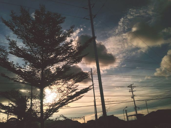 He that plant trees love others beside himself. EyeEm Featuremeinstagood Sky Cloud - Sky Tree Electricity  Cable Plant Silhouette Sunset Outdoors Nature Beauty In Nature 10