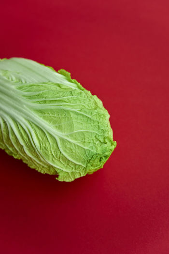 Chinakohl Chinese Cabbage Close-up Colored Background Day Dieting Food Food And Drink Freshness Green Color Healthy Eating Healthy Lifestyle Leaf No People Organic Raw Food Red Red Background Single Object Studio Shot Vegetable Vegetarian Food