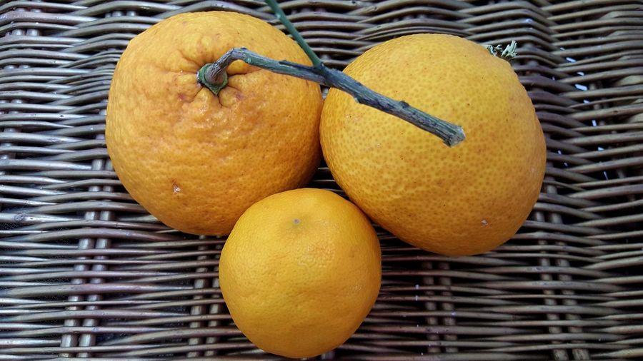 Close-up of orange fruits on wicker