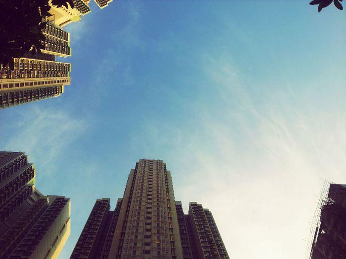 源於大地萬物久遠的耕耘 才會有今曰的藍天