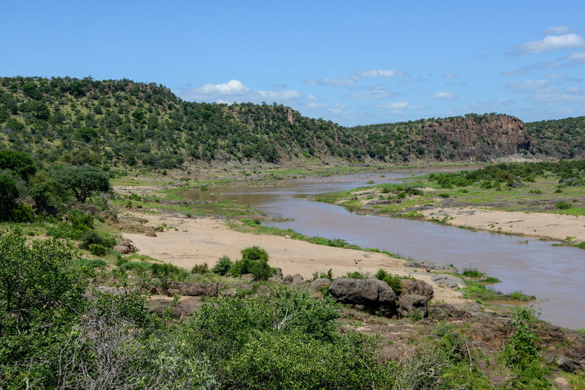 Safari in Kruger National Park, South Africa Kruger Park National Park Olifants River River View South Africa Wildlife & Nature Africa Beauty In Nature Day Kruger Krugernationalpark Krugerpark Landscape Nature Outdoors River Safari Scenics Sky Tranquility Water