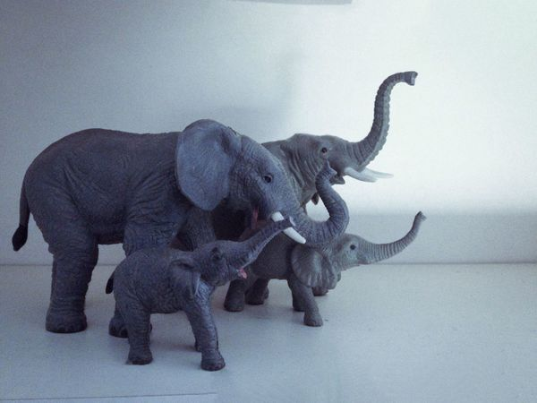 Elephants Toys Collection Cute