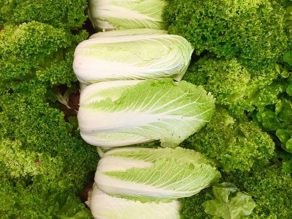 Frischer Salat Fresh Fresh Salad  Green Food Salat Fresh Food Green Salad Vegetarian Food Chinakohl